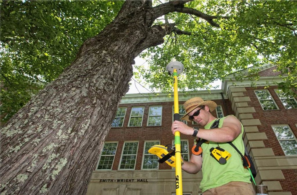 Arborist Consultations-Augusta Tree Trimming and Stump Grinding Services-We Offer Tree Trimming Services, Tree Removal, Tree Pruning, Tree Cutting, Residential and Commercial Tree Trimming Services, Storm Damage, Emergency Tree Removal, Land Clearing, Tree Companies, Tree Care Service, Stump Grinding, and we're the Best Tree Trimming Company Near You Guaranteed!