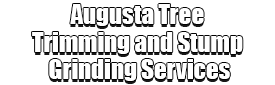 Augusta Tree Trimming and Stump Grinding Services Logo-We Offer Tree Trimming Services, Tree Removal, Tree Pruning, Tree Cutting, Residential and Commercial Tree Trimming Services, Storm Damage, Emergency Tree Removal, Land Clearing, Tree Companies, Tree Care Service, Stump Grinding, and we're the Best Tree Trimming Company Near You Guaranteed!