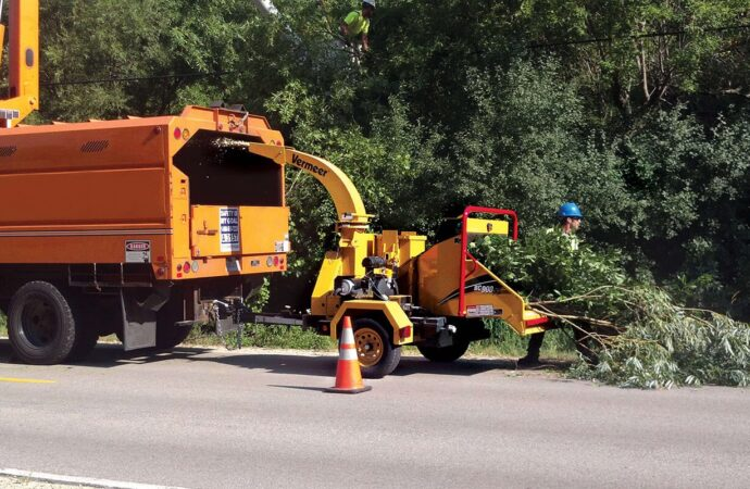 Commercial Tree Services-Augusta Tree Trimming and Stump Grinding Services-We Offer Tree Trimming Services, Tree Removal, Tree Pruning, Tree Cutting, Residential and Commercial Tree Trimming Services, Storm Damage, Emergency Tree Removal, Land Clearing, Tree Companies, Tree Care Service, Stump Grinding, and we're the Best Tree Trimming Company Near You Guaranteed!
