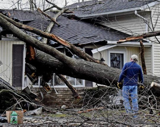 Storm Damage-Augusta Tree Trimming and Stump Grinding Services-We Offer Tree Trimming Services, Tree Removal, Tree Pruning, Tree Cutting, Residential and Commercial Tree Trimming Services, Storm Damage, Emergency Tree Removal, Land Clearing, Tree Companies, Tree Care Service, Stump Grinding, and we're the Best Tree Trimming Company Near You Guaranteed!