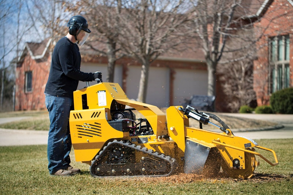 Waynesboro-Augusta Tree Trimming and Stump Grinding Services-We Offer Tree Trimming Services, Tree Removal, Tree Pruning, Tree Cutting, Residential and Commercial Tree Trimming Services, Storm Damage, Emergency Tree Removal, Land Clearing, Tree Companies, Tree Care Service, Stump Grinding, and we're the Best Tree Trimming Company Near You Guaranteed!